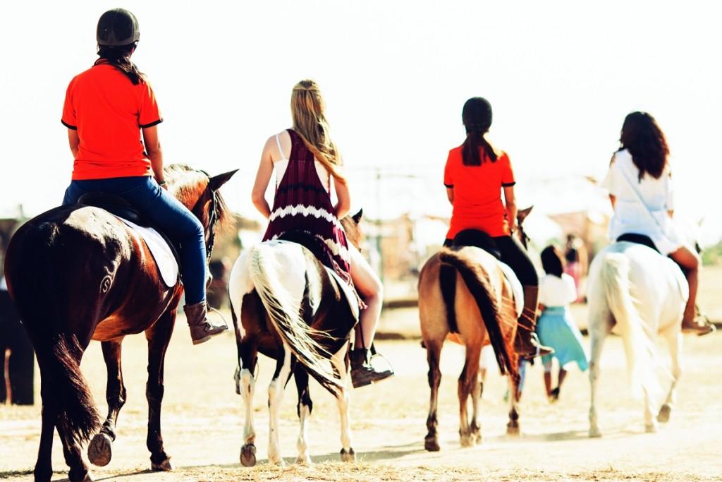 Wonderfruit on horseback