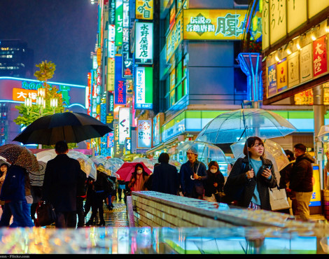 6 Quirky Things to Do in Tokyo