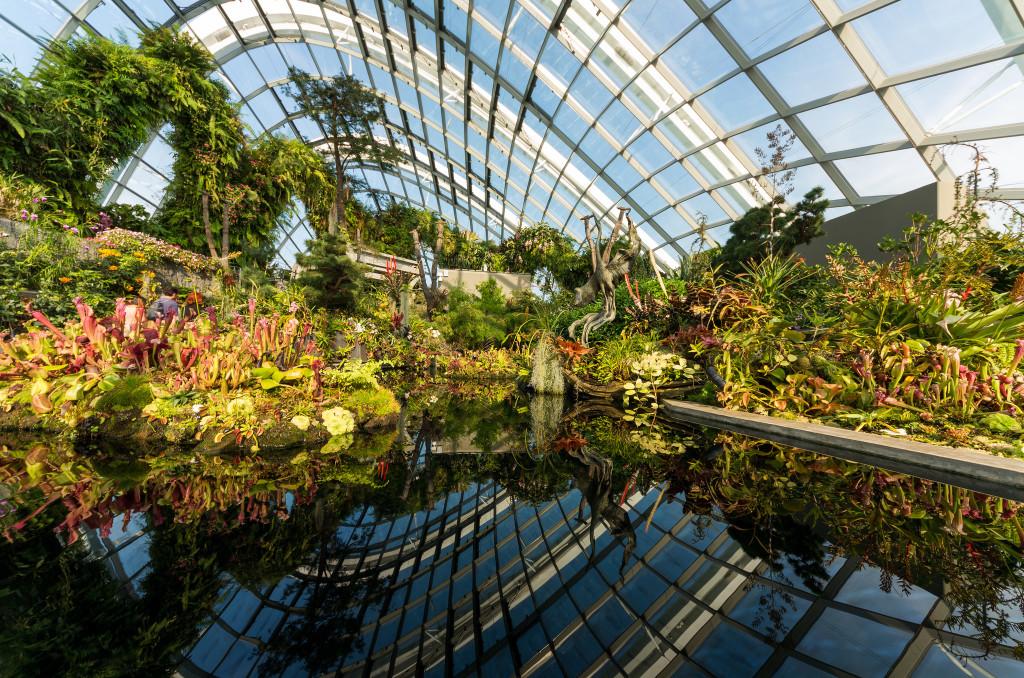 Gardens by the Bay. Kai Lehmann - Flickr CC 2