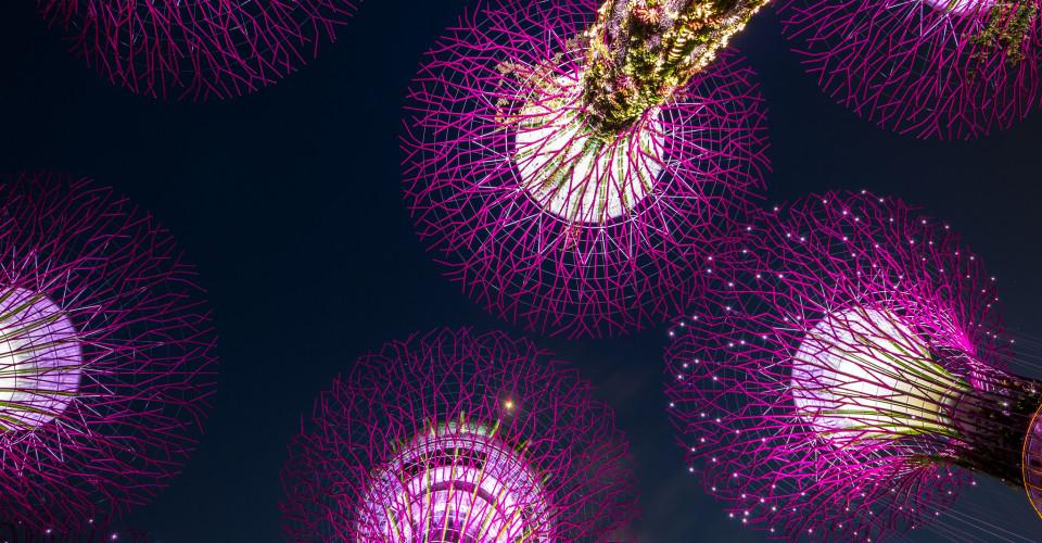 Singapore SkyTrees. Photo: Kai Lehmann / Flickr CC