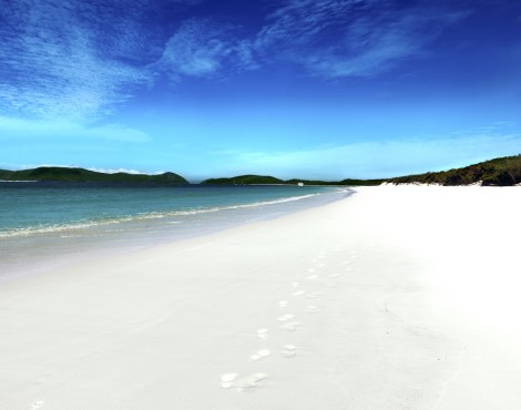 Escape to Hamilton Island