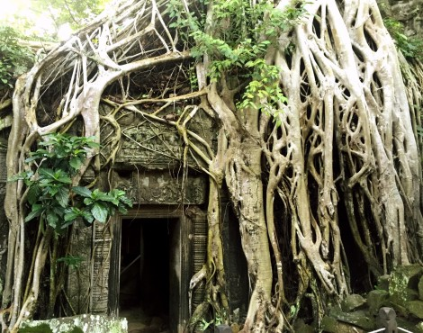 Explore Siem Reap in Secret