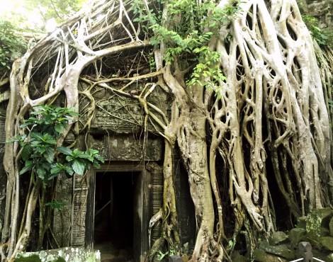 Explore Siem Reap in Secret