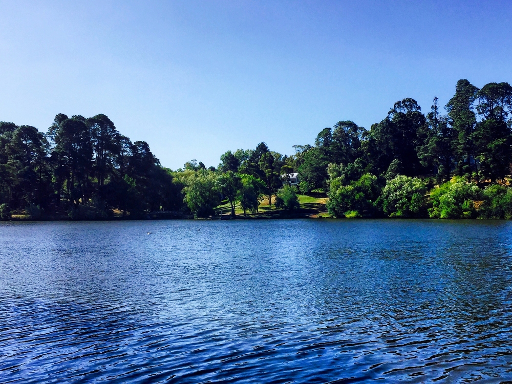 Picturesque Lake Daylesford is one of the must-do wellness experiences in Daylesord. Photo: Gayatri Bhaumik.