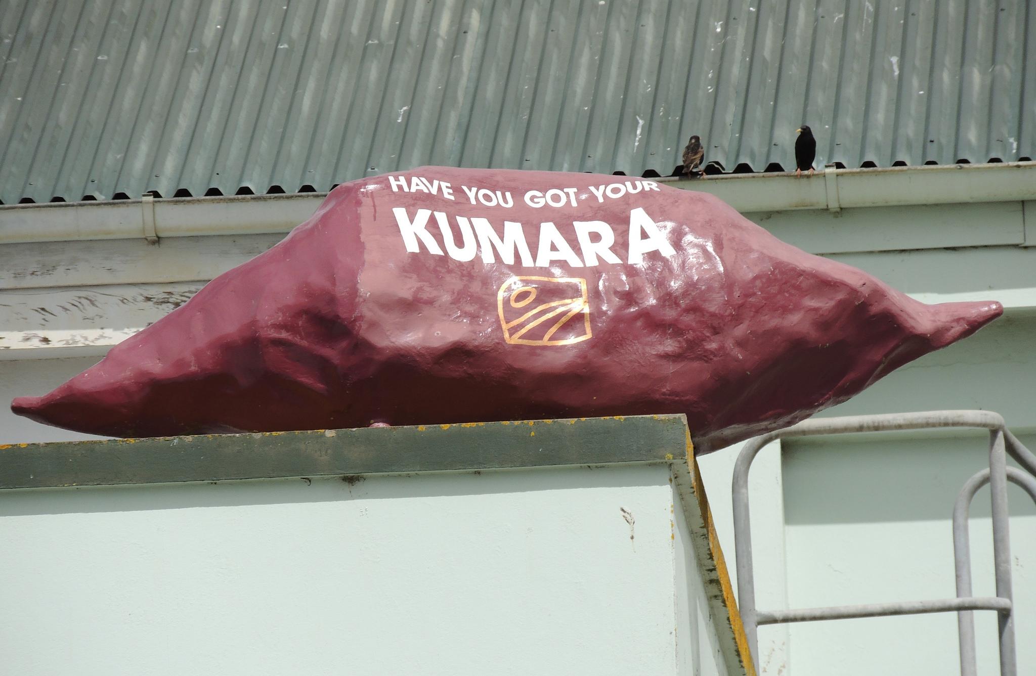 Kumara. Photo: Jennifer Whiting/Flickr CC