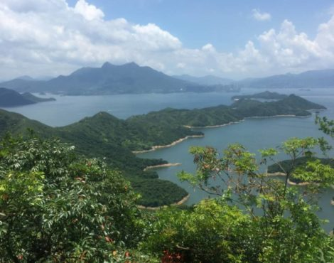 Insider's Guide to Tai Po