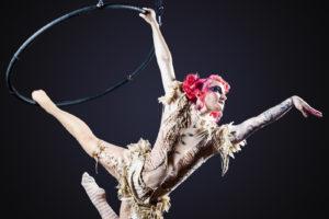 Cirque! at Duddell's