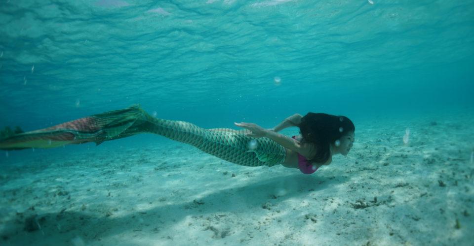 Mermaid-Rox-Hero-photo