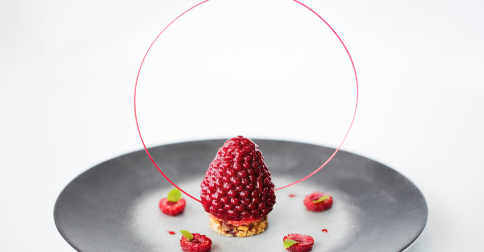 Raspberry-A-Composition-of-Raspberry-Delicacies-2