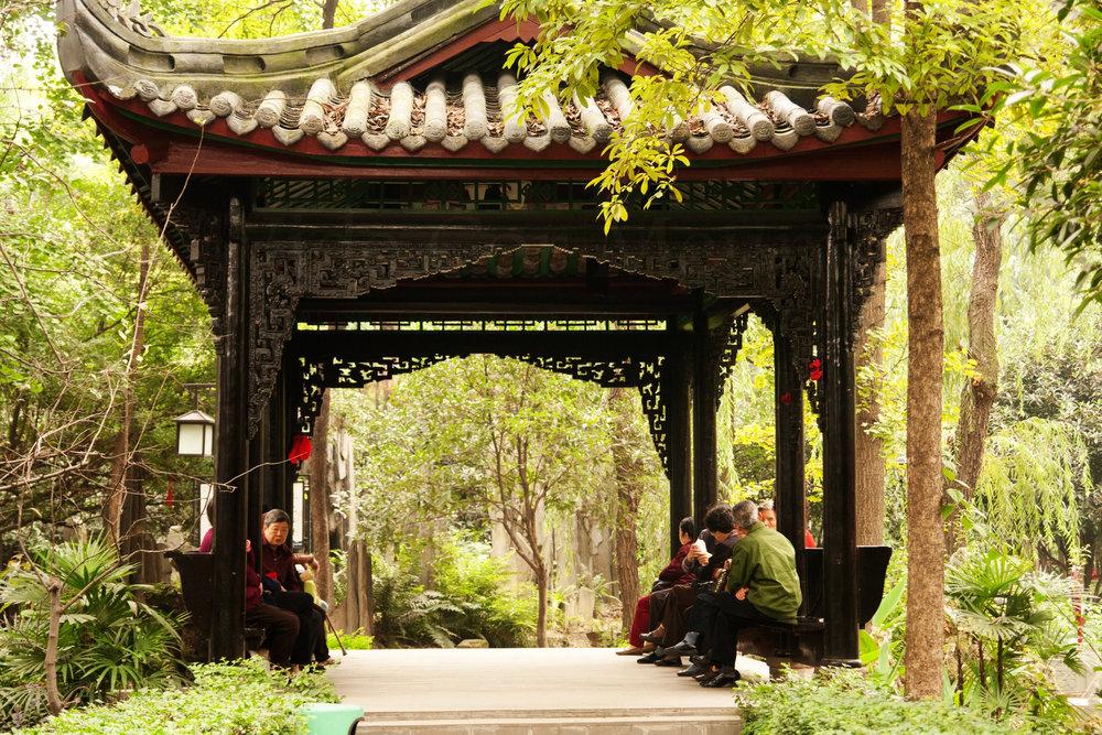 A tranquil garden scene in Chengdu.