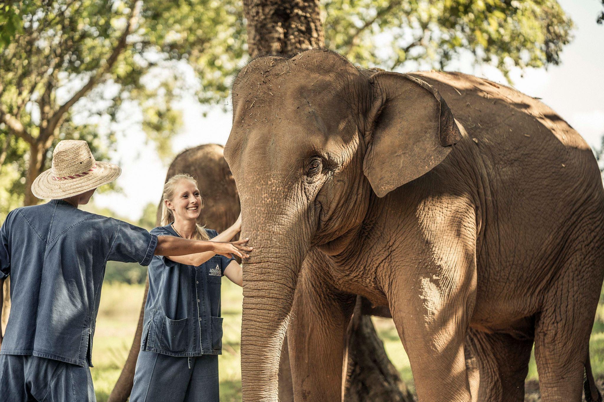 An elephant experience at the Anantara Golden Triangle Elephant Camp & Resort. Photo: Anantara