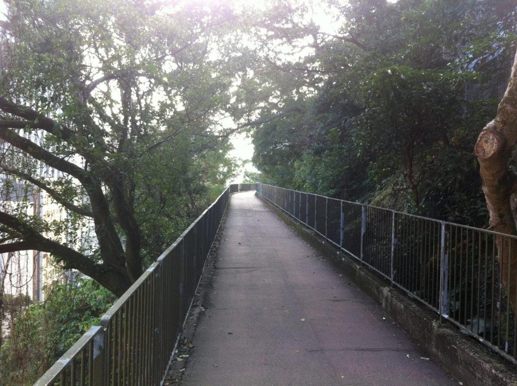 running trails Hong Kong