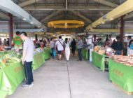 Fresh produce and local specialties! Taipei's ridiculously fun farmers markets