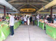 新鲜农产品和当地特色!台北的嘲弄有趣的农民市场