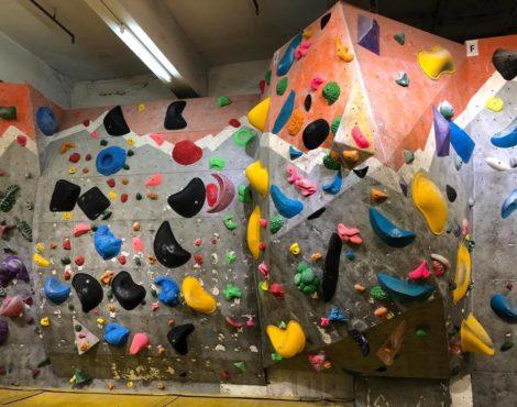 Spotlight: Climbing and Bouldering at GoNature