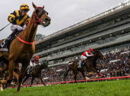 Race for the Top: Hong Kong International Races: December 8