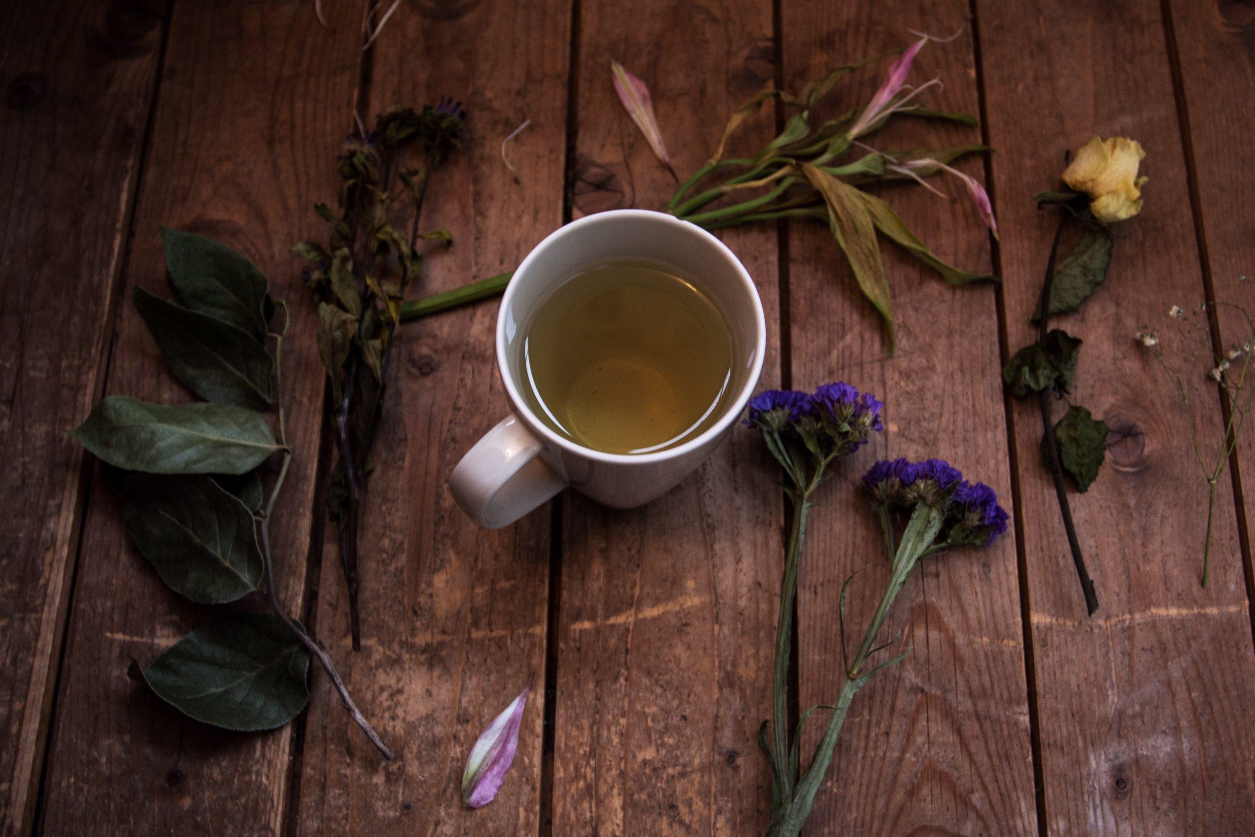 Canto Slang 101: Green Tea Bitch 綠茶婊