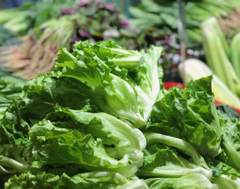 Market Watch: Chinese Lettuce