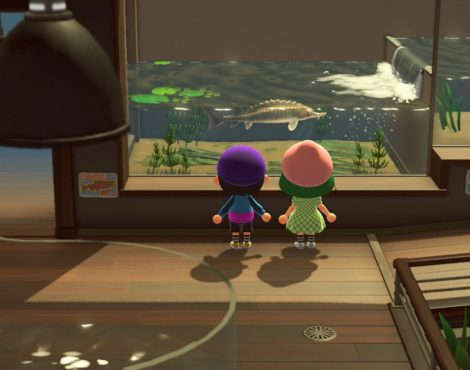 How Animal Crossing makes life better, according to these 5 fans