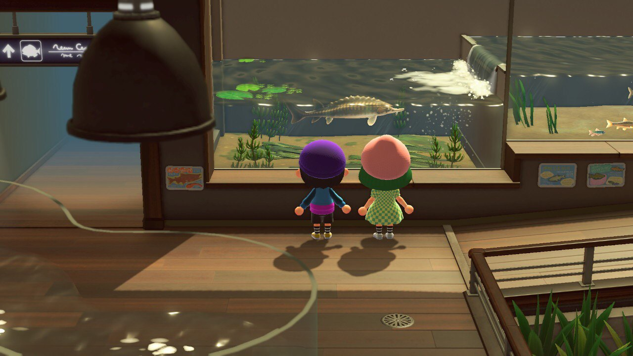 How Animal Crossing Makes Life Better According To These 5 Fans The Loop Hk
