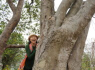 Hot Seat: Amanda Yik On The Benefits Of Forest Bathing