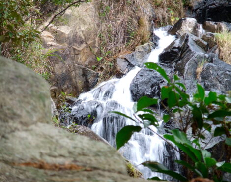 The Best Waterfall Hikes In Hong Kong