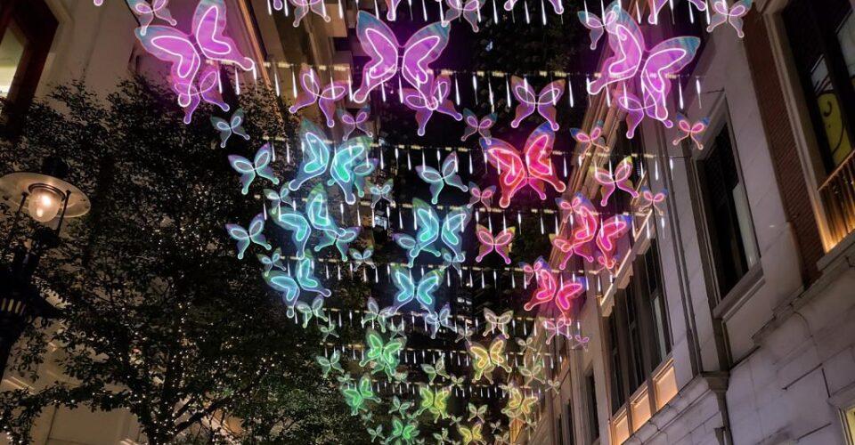 butterflies of hope (1)